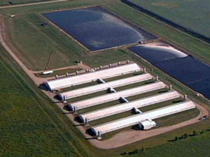 A Time to Act for Family Farms